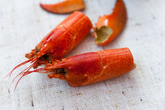 Lobster soup Royalty Free Stock Photos