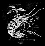 Lobster - Spaceship Royalty Free Stock Image