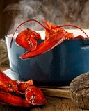 Lobster Steaming in a Pot. On a rustic background Stock Photo