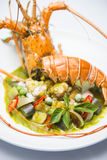 Lobster stir fired with green curry Thai food Stock Photos