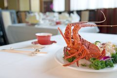 Lobster on the table Royalty Free Stock Image