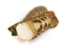 Lobster tail. Raw lobster tail - Studio shot of Stock Photos