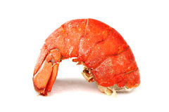 Lobster tail Royalty Free Stock Image