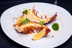 Lobster tail in maple-truffle sauce. With lemon and basil in restaurant stock photography