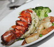 Lobster Tail And Shrimps Royalty Free Stock Photo