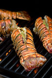 Lobster tails Royalty Free Stock Photo