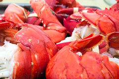 Lobster Tails and Claws Royalty Free Stock Photo