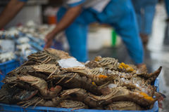 Lobster Tails Fish Market Stock Image