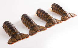 Lobster tails Royalty Free Stock Images