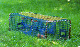 Lobster trap Stock Photography