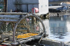 Lobster trap Stock Images