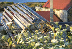 Lobster trap, Blue Rock, Nova Scotia Stock Photography