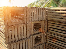 Lobster traps on a beach, Belize Royalty Free Stock Photo