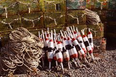 Lobster Traps and Buoys Royalty Free Stock Images