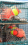 Lobster traps and colorful buoys Stock Photography