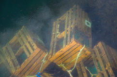 Lobster traps under water. With shoal of small fish royalty free stock photography