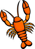 Lobster vector illustration. Vector illustration of a lobster Stock Images