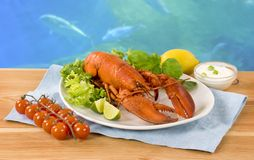 Lobster and vegetable garnish Royalty Free Stock Photo