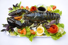 Lobster and vegetables. On white background stock image