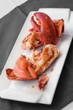 Lobster on white dish Stock Photos