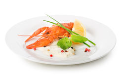 Lobster on a white plate Royalty Free Stock Images