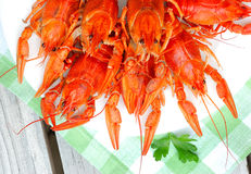 Lobsters. On a plate in outdoor cafe Royalty Free Stock Image