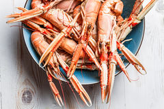 Lobsters as a seafood dish Royalty Free Stock Photo
