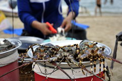 Lobsters at the Beach. Lobsters waiting to be served at the Beach in Nha Trang in Vietnam Royalty Free Stock Images