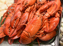 Lobsters being sold in victoria market Royalty Free Stock Images