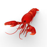 Lobsters Royalty Free Stock Photography