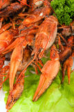 Lobsters with salad. Red lobsters with green salad Stock Photo