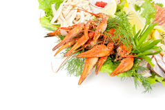 Lobsters with salad. On white background Stock Image