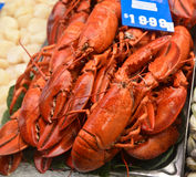 Lobsters for sale in market place Stock Photo