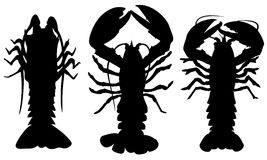 Lobsters Stock Photos