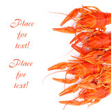 Lobsters on white Royalty Free Stock Photos