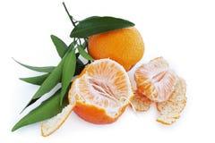 Lobule tangerines Stock Photos