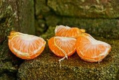 Lobules och stycken av mandarinen på grön mossa på stenar Royaltyfri Fotografi