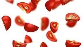 Lobules spada na białym tle pomidor, 3d ilustracja Zdjęcie Royalty Free