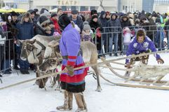 "Local aborigines - Khanty, ride children on a reindeer sleigh of three deer, sleigh, winter, ""Seeing off winter"" festival royalty free stock photos"