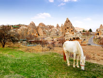 Local ancient cave homes with domestic horse on the foreground Royalty Free Stock Photography