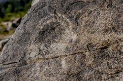 Local antigo com os petroglyphs históricos em Quirguizistão foto de stock