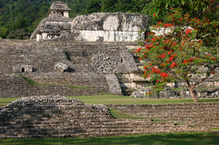 Local archaeological de Palenque Imagem de Stock Royalty Free