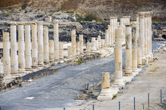 Local arqueológico, Beit Shean, Israel Fotografia de Stock