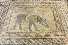 Local arqueológico de Volubilis, cidade antiga do império romano, Marrocos fotos de stock