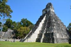 Local arqueol?gico de Tikal na Guatemala imagem de stock