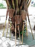 Local bamboo broom of thailand lay on the palm tree Royalty Free Stock Photography