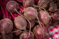 Local beets at a Farmers Market Stock Image