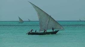 Local boat in Zanzibar. Fishing in a Fisherman`s Boat in Zanzibar stock footage