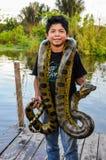 Local boy with an anaconda in the Amazon Rainforest, Manaos, Bra Stock Photography