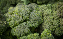 Local broccoli produce at a Farmers Market Royalty Free Stock Image